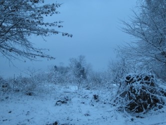 thumbnail_snowy-morning-by-akwelle-valis