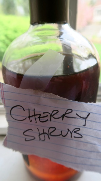 cherry shrub by Akuokuo Vallis.jpg